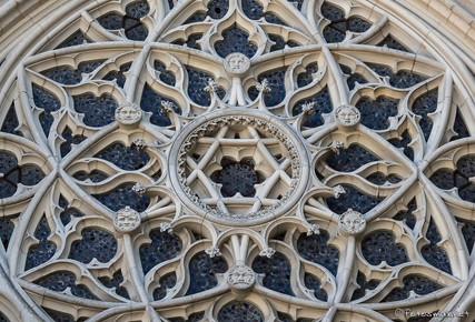 Rose de la chapelle