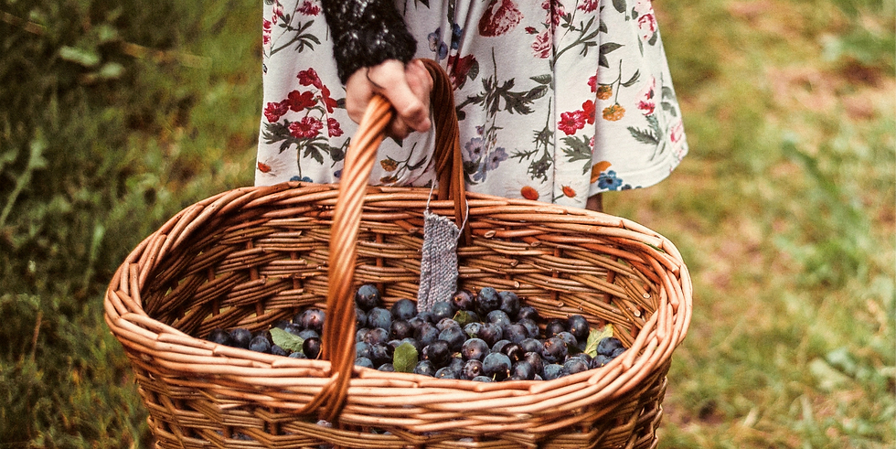 Girl%252520with%252520Basket%252520of%252520Berries_edited_edited_edited.png