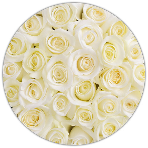 Signature Medium Box - White Stem Roses