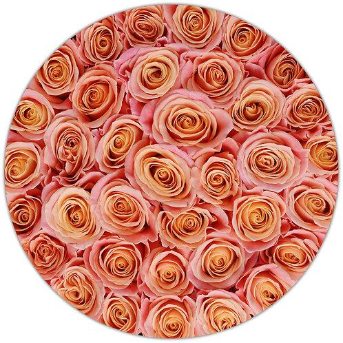Nature's Peach Stem Roses