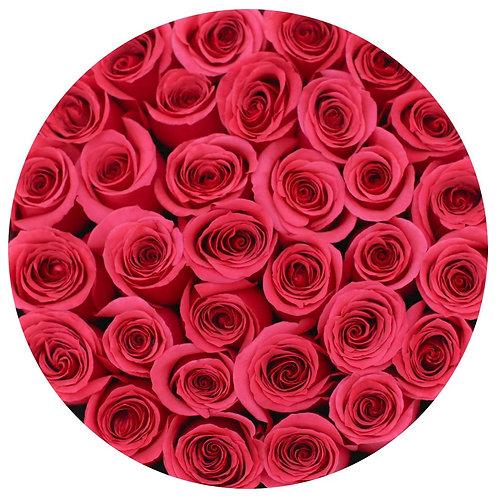 Hot Pink Stem Roses