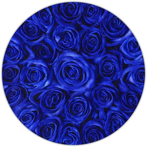 Blue Stem Roses