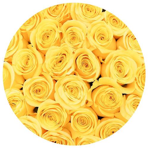 Signature Medium Box - Yellow Stem Roses