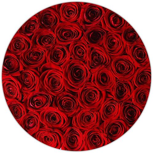 Signature Medium Box - Red Stem Roses