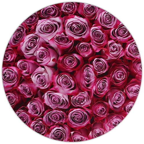 Deep Purple Stem Roses