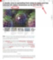 cnn seasonal flu.jpg