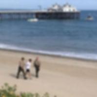 surfer arrested covid.jpg