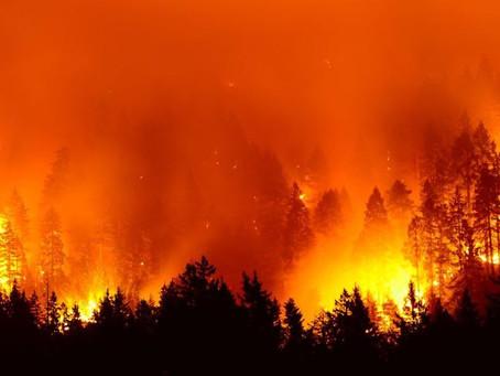 *WARNING* - The Amazon is STILL BURNING