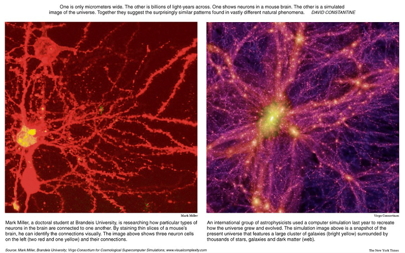 neurons and universe.png