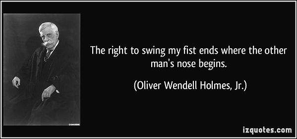 quote-the-right-to-swing-my-fist-ends-wh