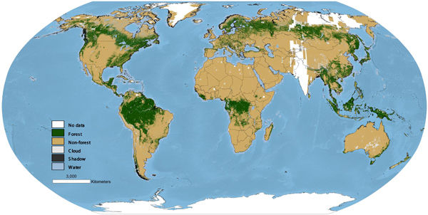 global-forest-map-1990.jpg