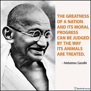 Gandhi-Quote-Animals-WEB1.jpg