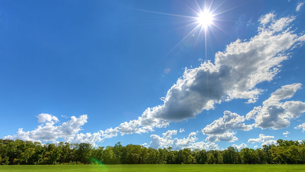 field-sunny-day-blue-light-white-sky-tre