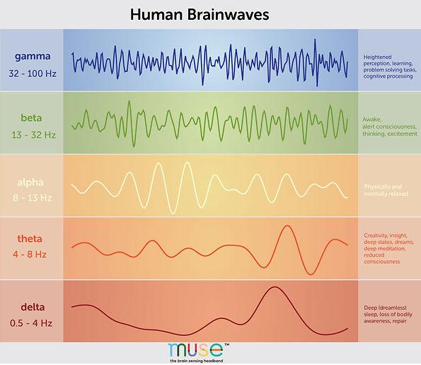 brainwaves-chart(5).jpg