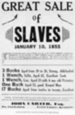 great sale of slaves.jpg