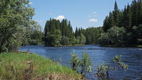 altai river.jpg