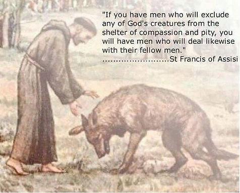 Saint Francis quote.jpg