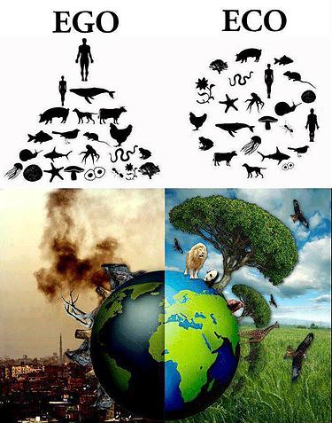 ego vs eco.png