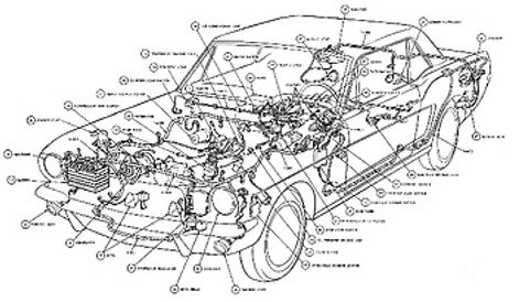 car diagram.jpg