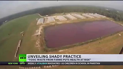 lake of feces1.jpg