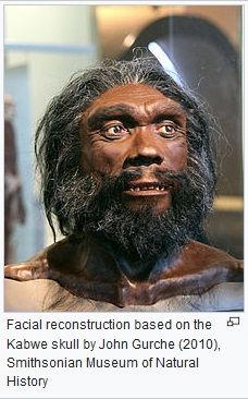 heidelbergensis.jpg