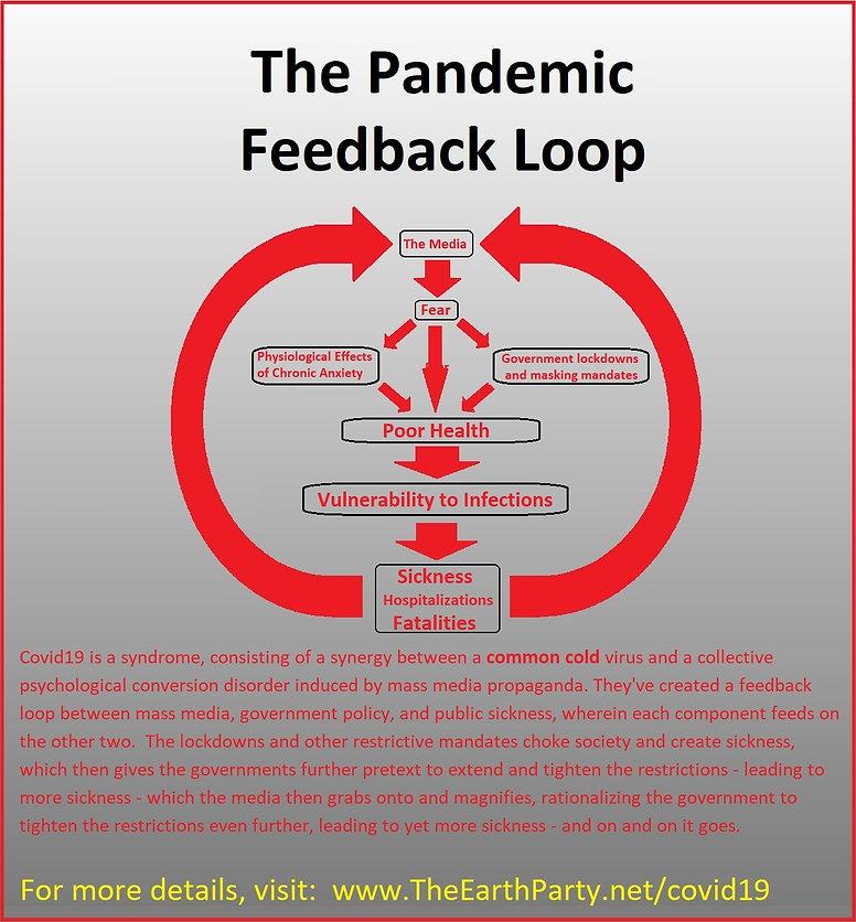 covid feedback loop.jpg