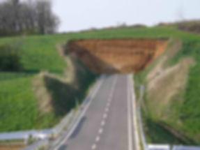 road into wall.jpg