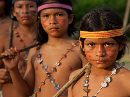 """As the Amazon Burns, """"Freaking Out"""" is NOT ENOUGH"""