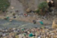 toxic waste5.jpg