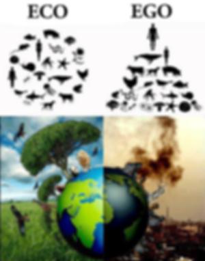 eco vs ego.png