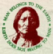 native1.jpg