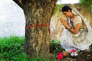 praying to tree 1.jpg