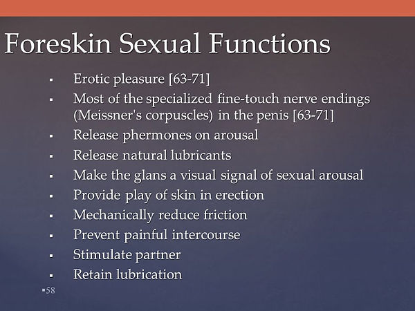 Foreskin+Sexual+Functions.jpg