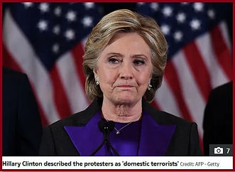 hillary clinton domestic terrorists.jpg