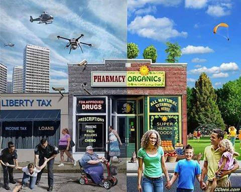 paradigms pharmacy.jpg