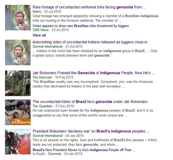 brazil indigenous genocide.jpg