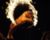 tiger fire hoop.jpg