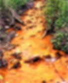 polluted stream 1.jpg