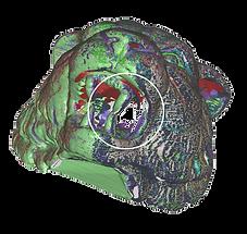 Solutionix ezScan | Enhanced Scan Data Processing