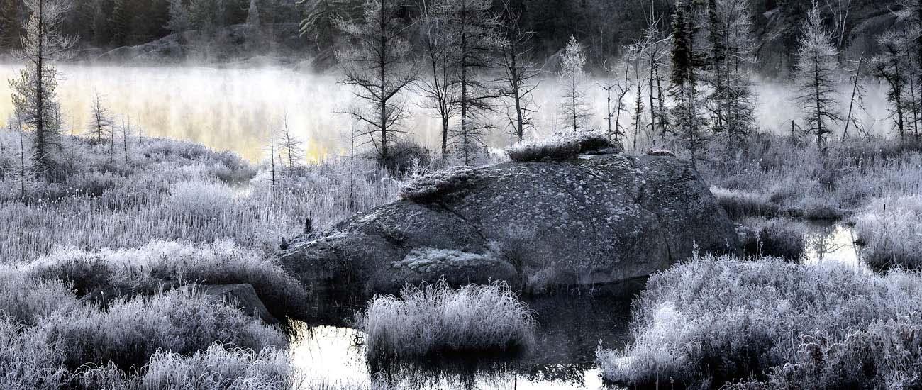 Frosty Shoreline