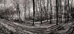 Spring Bruce Trail