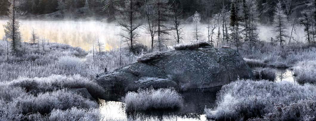 Frosty Shoreline #3