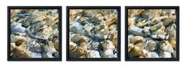 Georgian Bay Ripples - triptych.jpg