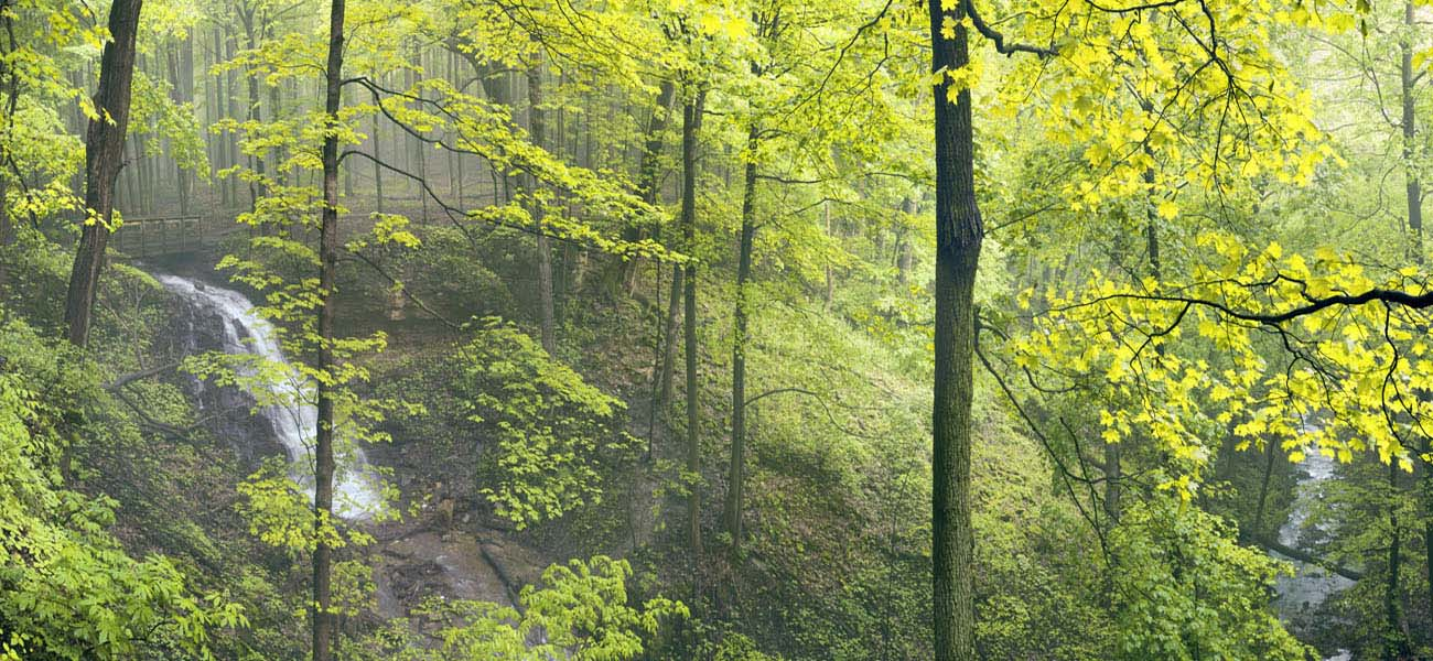 Spring Cantenbury Falls #4