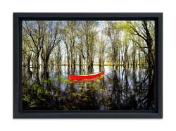 Spring Red Canoe