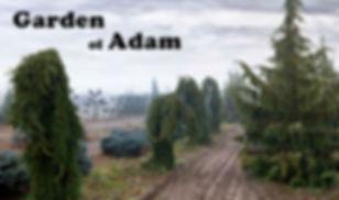 Copy of Garden of Adam.jpg