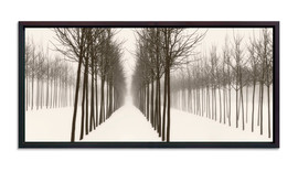 Winter Fog #1
