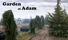 Garden of Adam.jpg