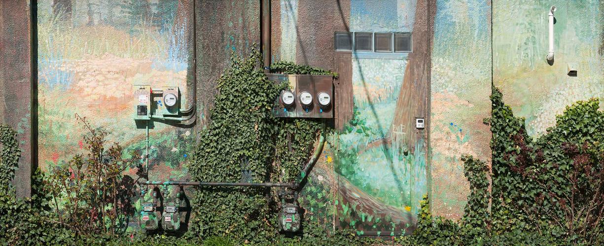 Urban Nature #2.jpg