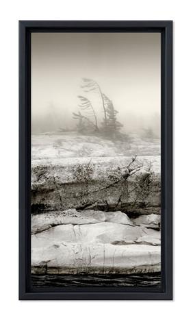 Misty Georgian Bay Shoreline